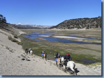 Argentina landscape, on the Crossing the Andes on Horseback in Northern patagonia Trail