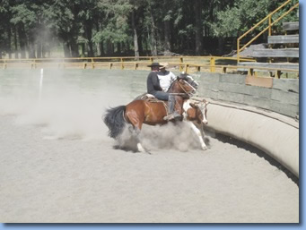 2 riders chasing a bull on a rodeo clinic at Antilco, Chile