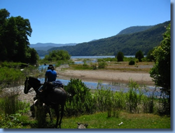 Rider in the delta of Rio Blanco river on a horseback trail ride in NP Huequehue, Chile