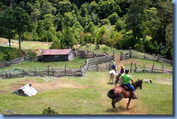 Riders in front of barn on a full day ride in Pucon, Chile