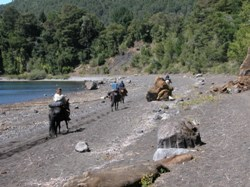 Riders on lakeshore on a ride in NP huerquehue, Chile