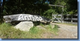 Antilco written on trunk at the entrance of the horse riding ranch.