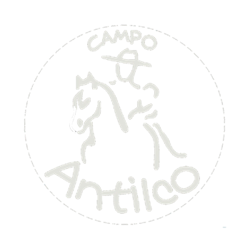 Logo Antilco: rider on horseback
